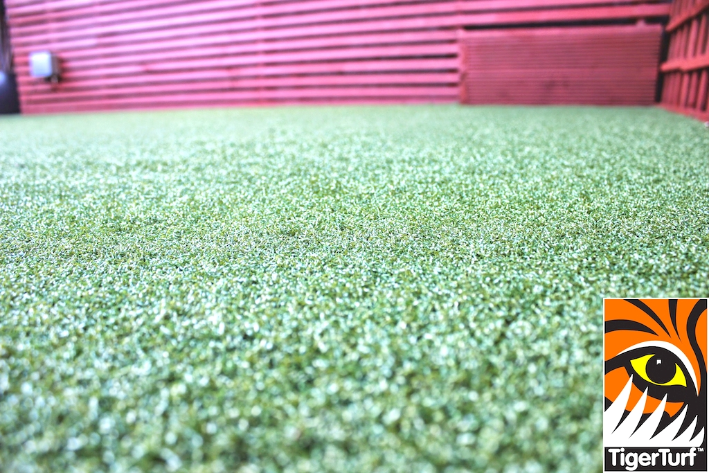 Synthetic grass in front lawn 51.jpg