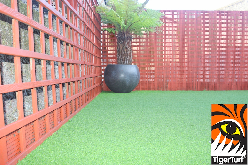 Synthetic grass in front lawn 97.jpg