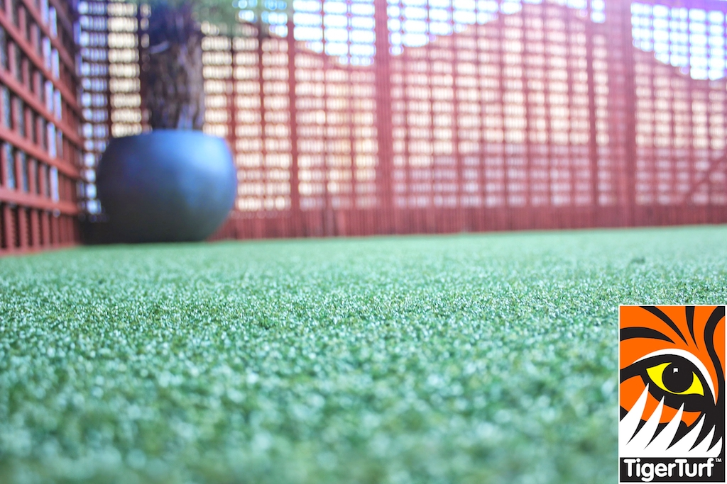 Synthetic grass in front lawn 77.jpg