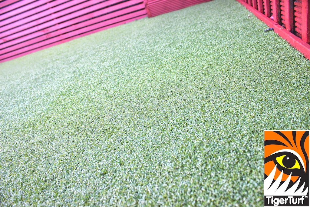 Synthetic grass in front lawn 52.jpg