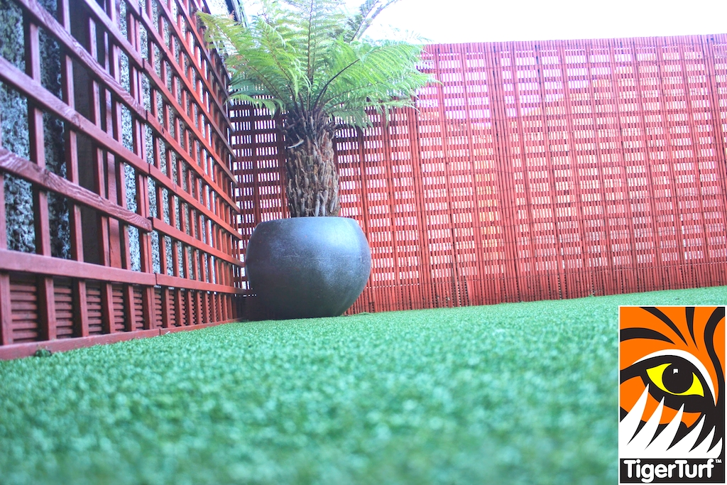 Synthetic grass in front lawn 86.jpg