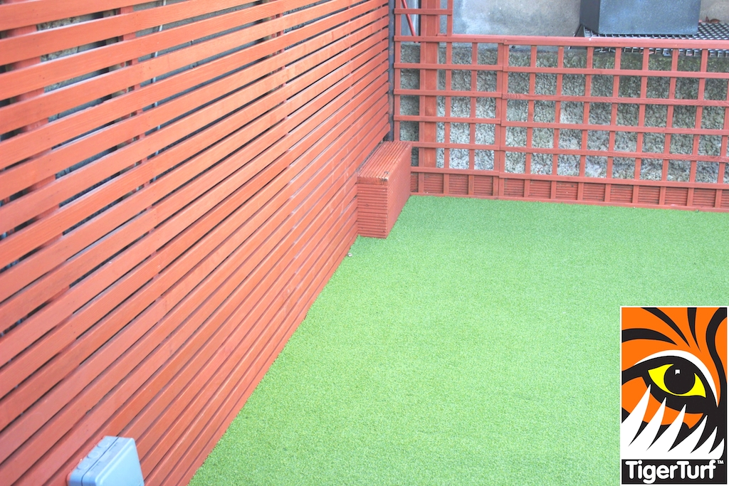 Synthetic grass in front lawn 32.jpg