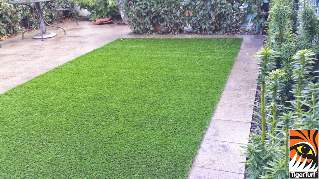 Synthetic grass in front lawn 56.jpg