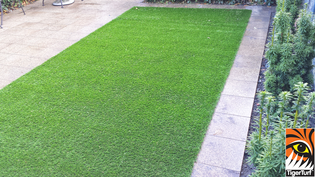 Synthetic grass in front lawn 59.jpg