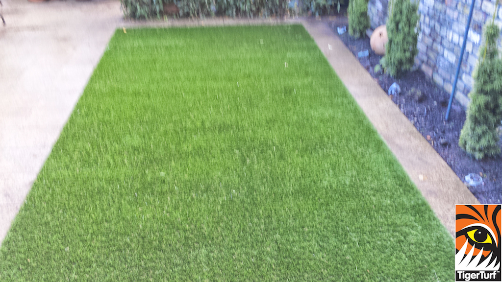Synthetic grass in front lawn 47.jpg