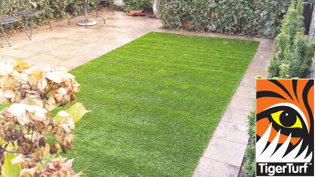 Synthetic grass in front lawn 20.jpg