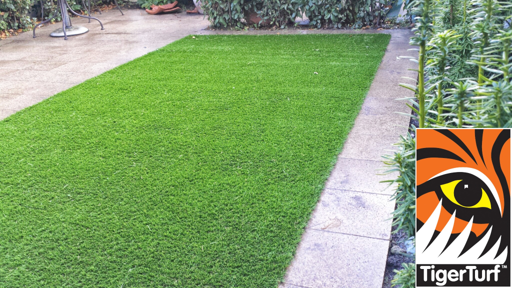 Synthetic grass in front lawn 54.jpg