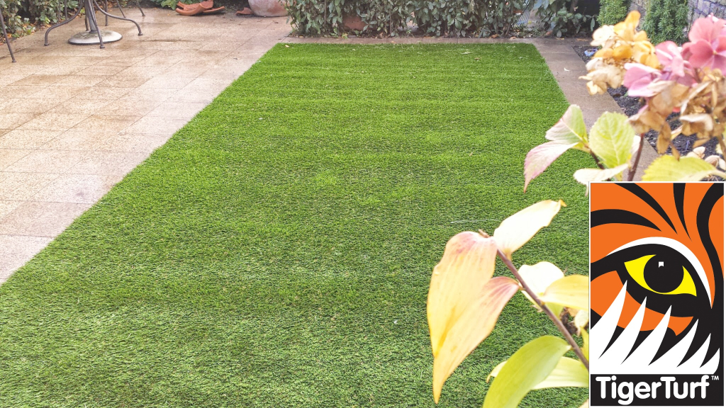 Synthetic grass in front lawn 16.jpg
