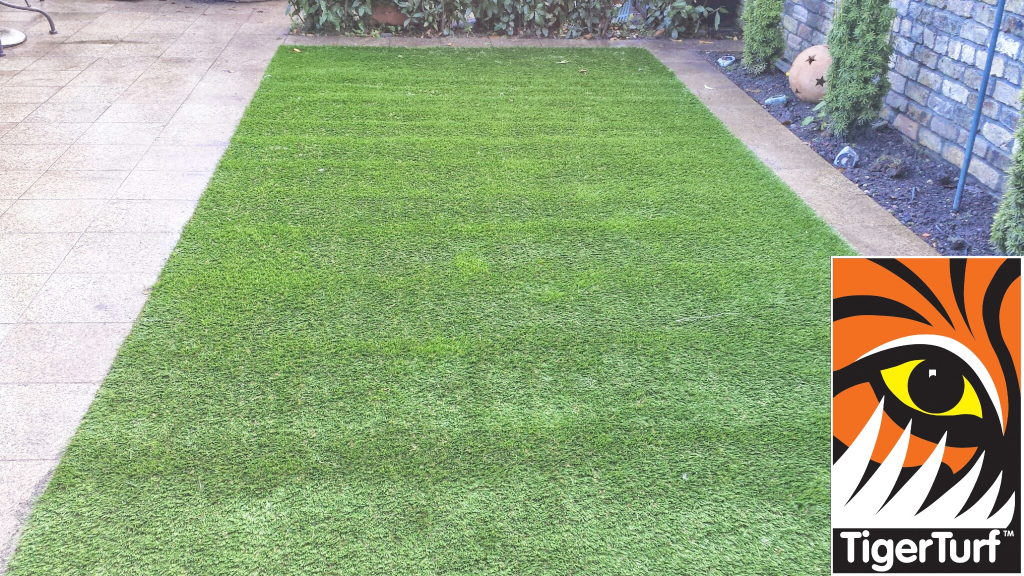 Synthetic grass in front lawn 2.jpg