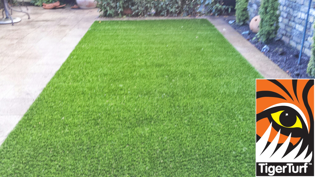 Synthetic grass in front lawn 38.jpg