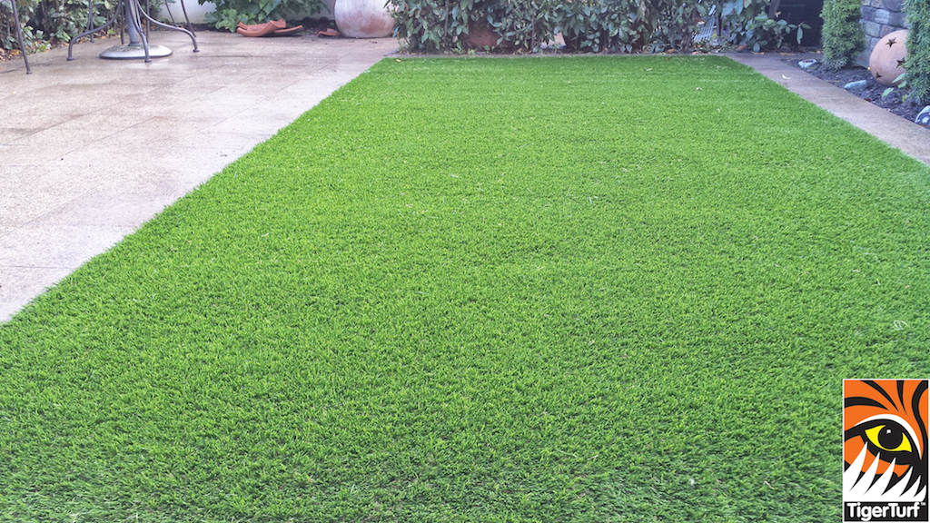 Synthetic grass in front lawn 45.jpg
