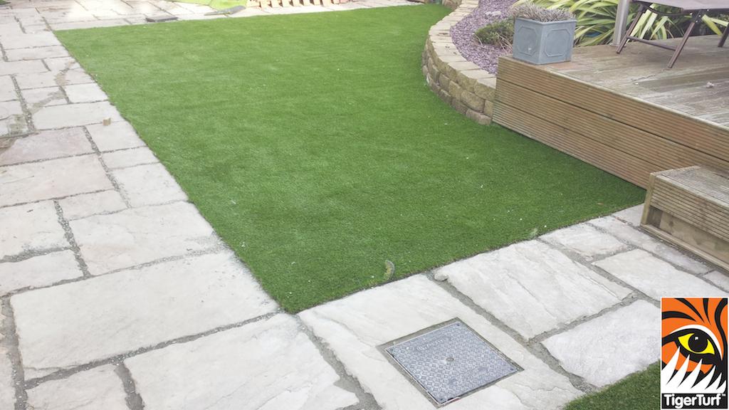 Syntehtic Garden Grass