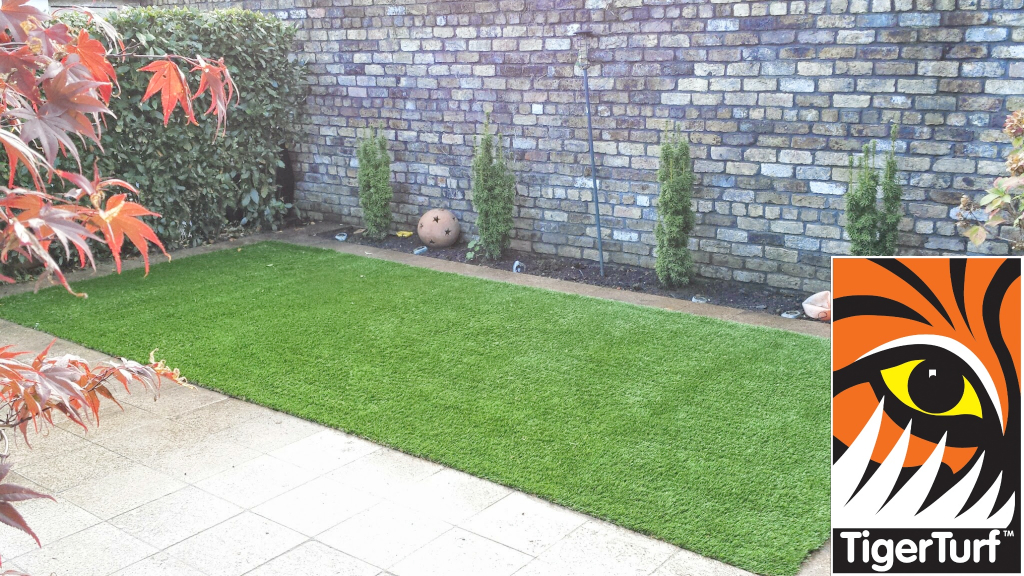 Synthetic grass in front lawn 3.jpg