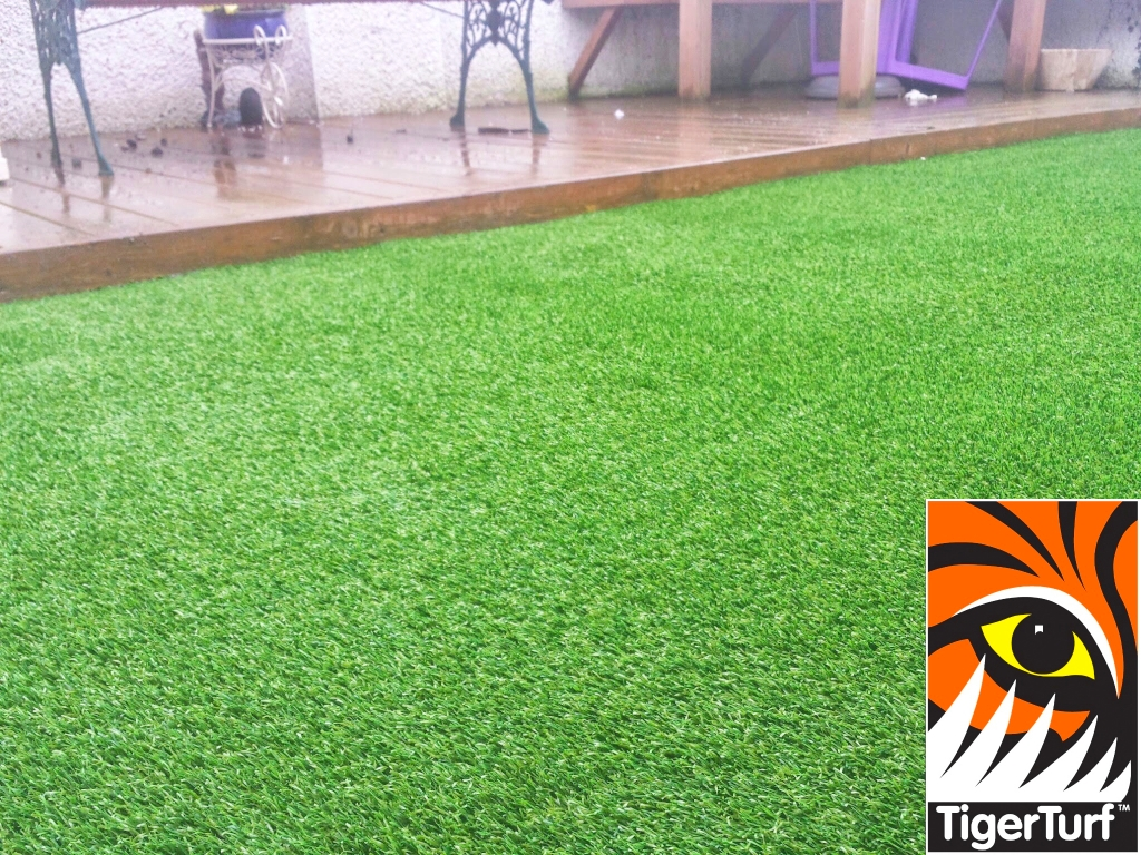 Synthetic grass in front lawn 37.jpg