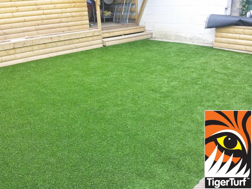 new TigerTurf lawn