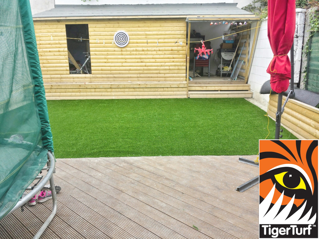 new TigerTurf synthetic lawn