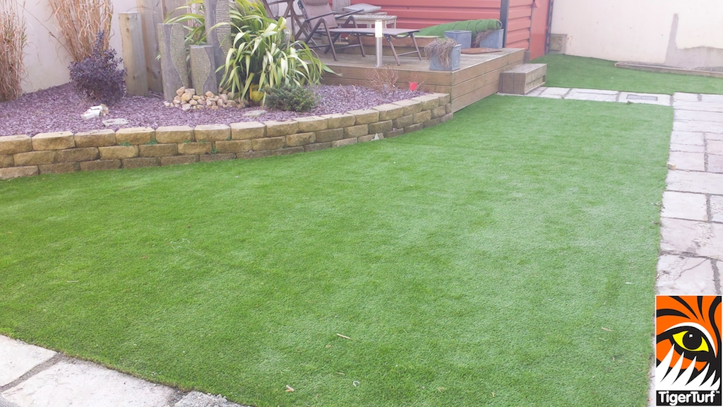 new astro turf lawn
