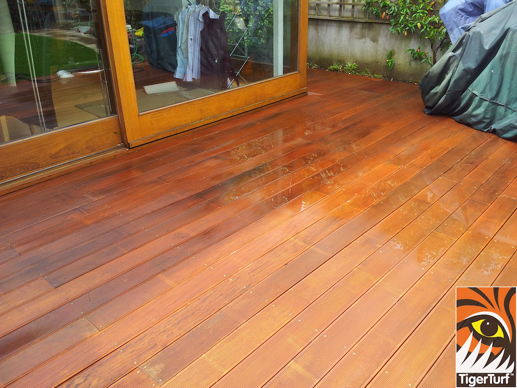 decking and lawn turf 699.jpg