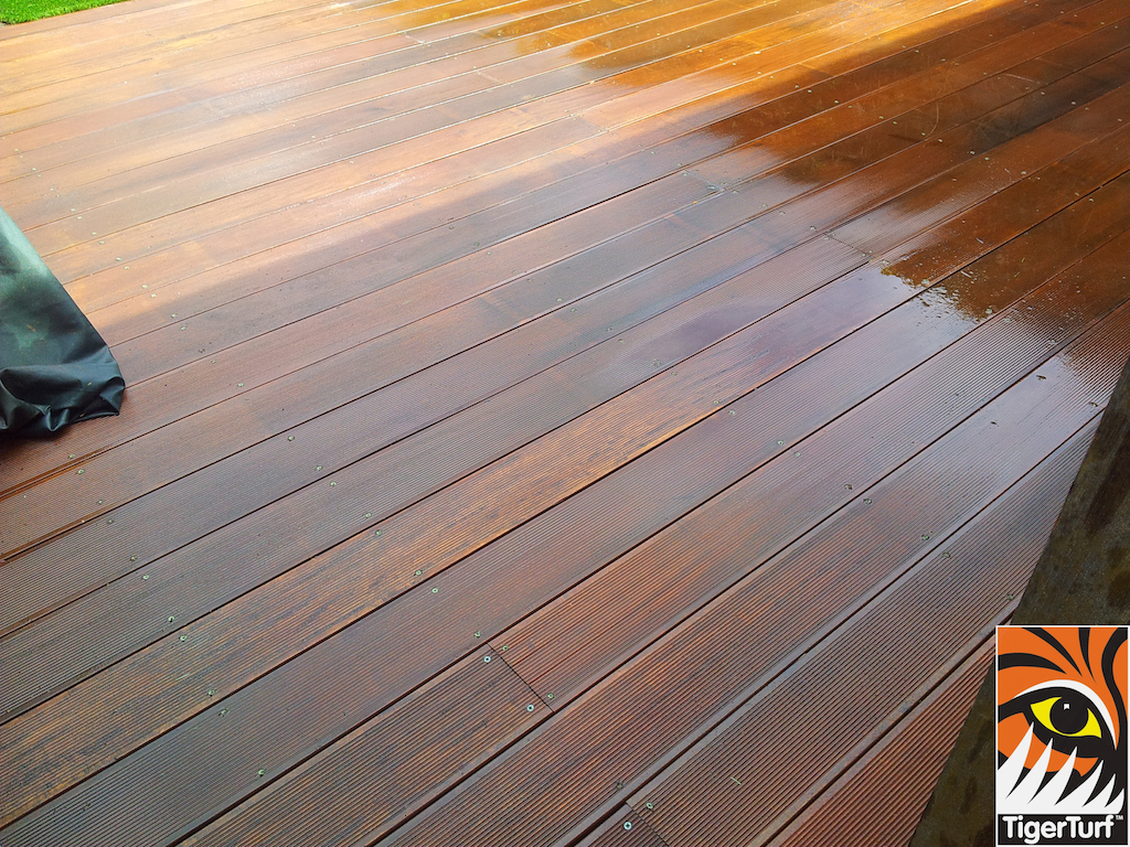 decking and lawn turf 711.jpg