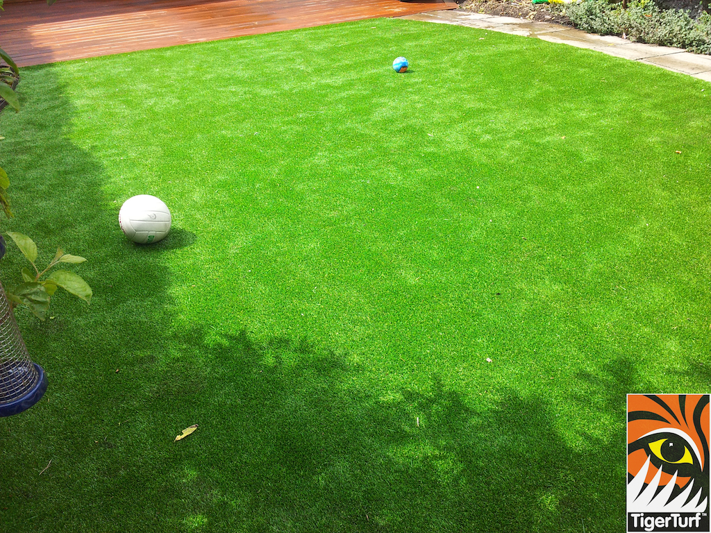 decking and lawn turf 732.jpg