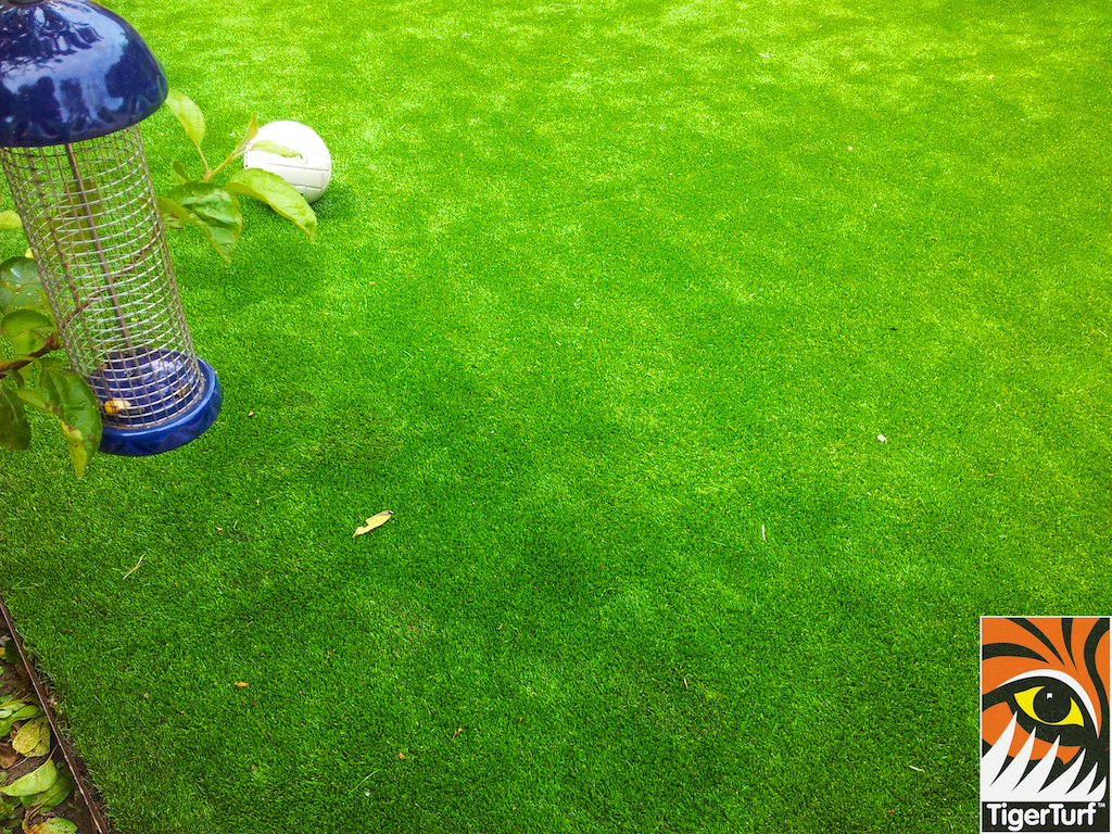 decking and lawn turf 740.jpg