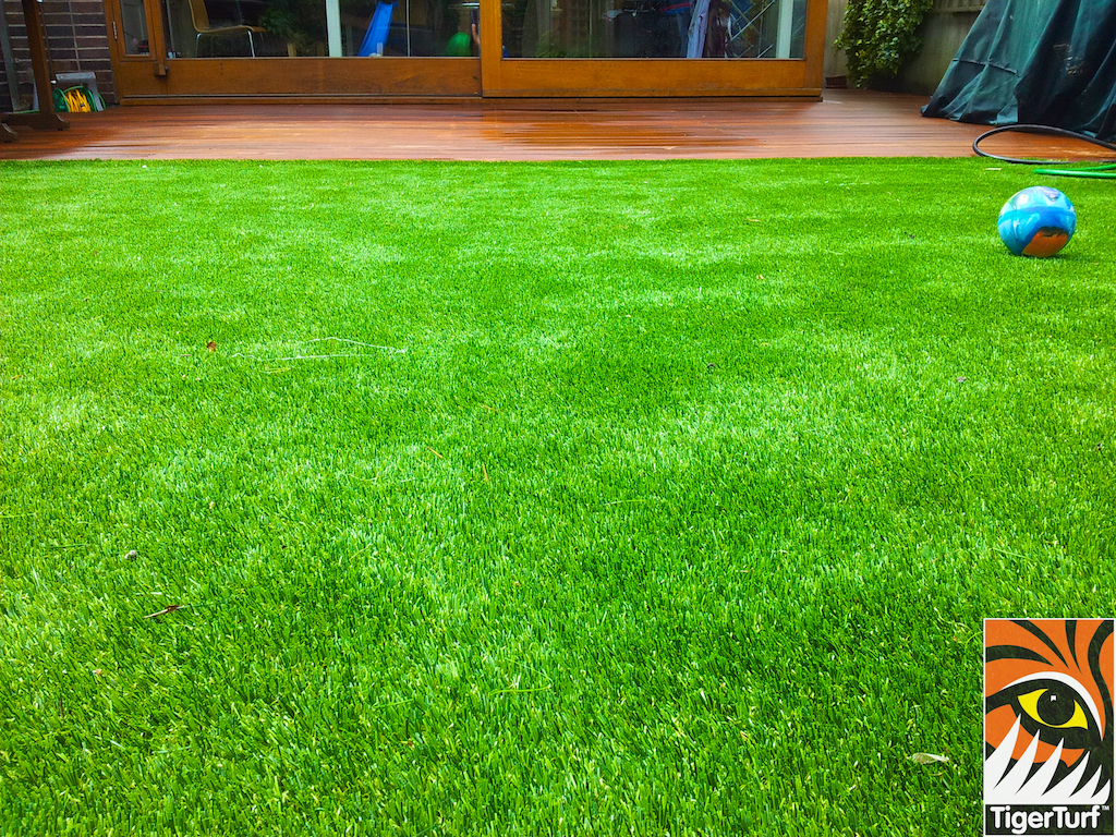 decking and lawn turf 760.jpg