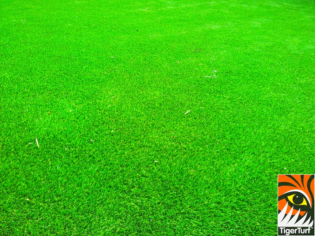 decking and lawn turf 651.jpg