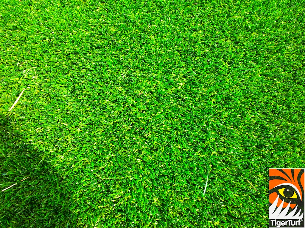decking and lawn turf 657.jpg