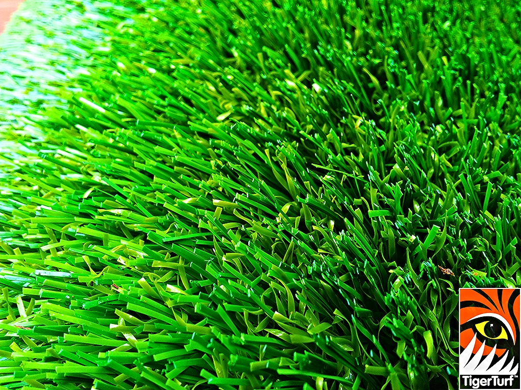 decking and lawn turf 668.jpg