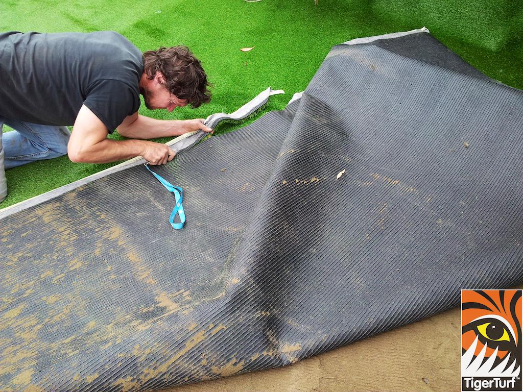 Installer trimming Grass turf