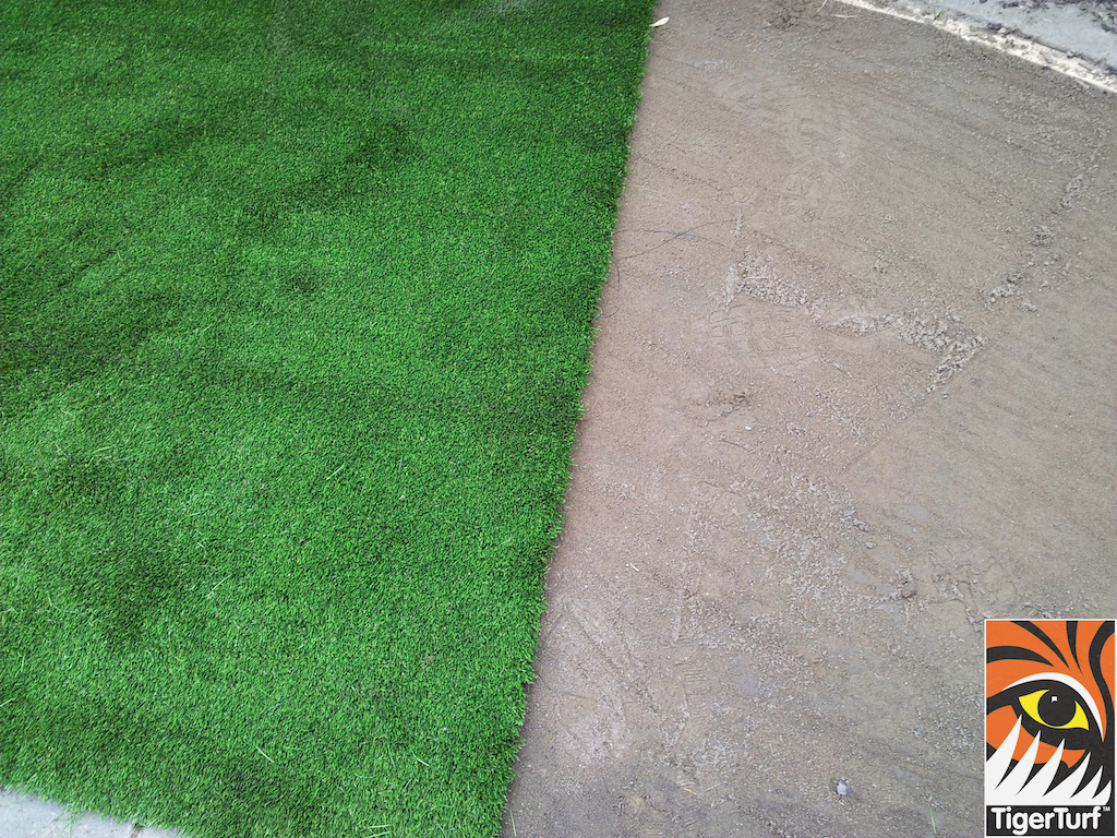 Roll of Lawn Turf