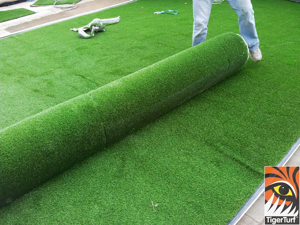 tigerturf lawn turf 811.jpg