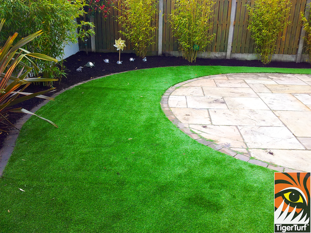 patio turf and planting