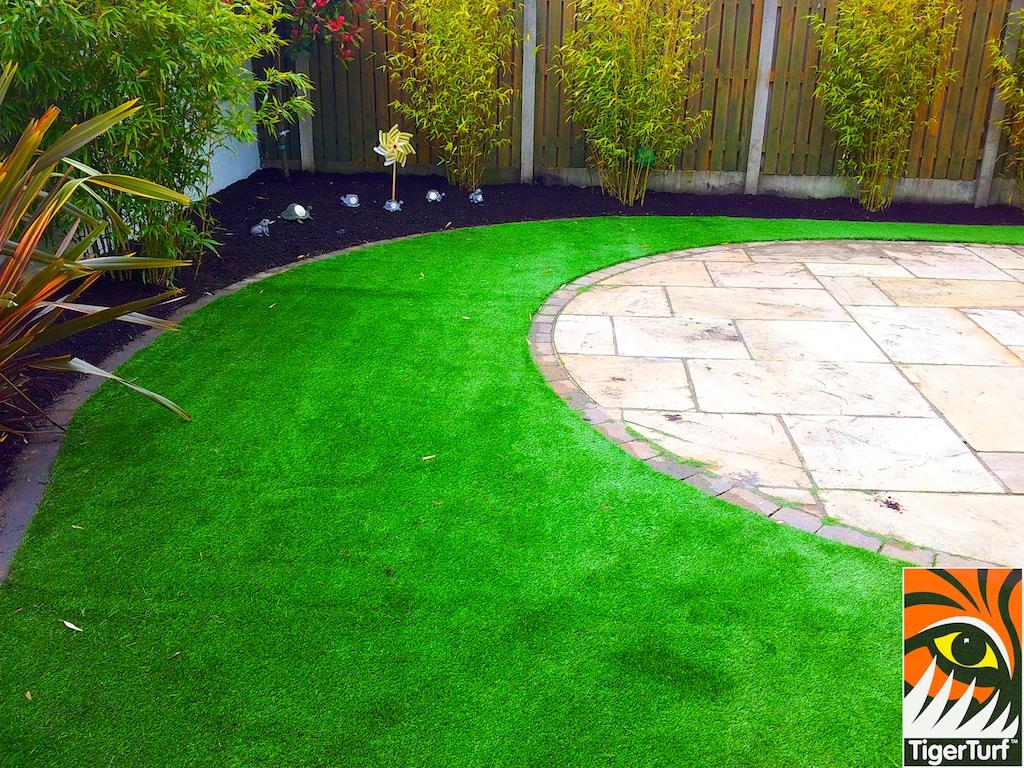 tigerturf lawn turf 846.jpg