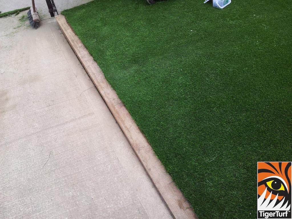 tigerturf lawn turf 820.jpg