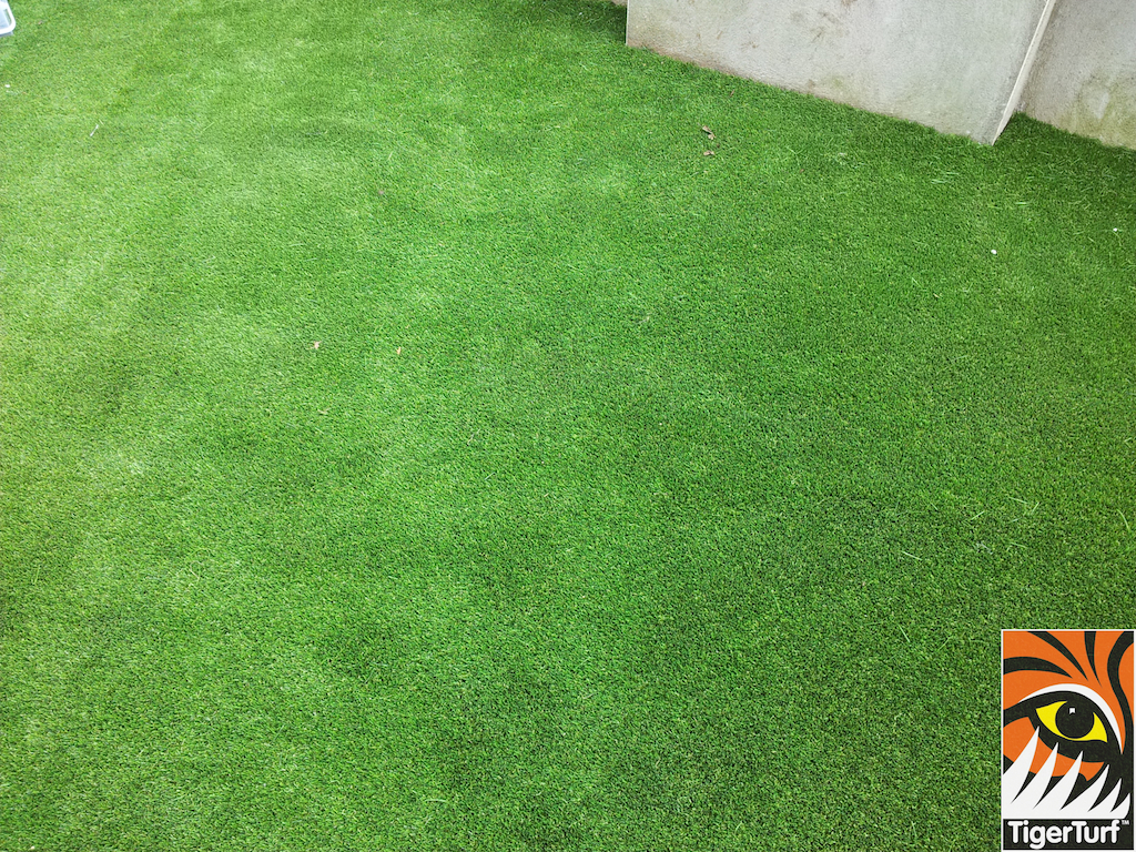 Synthetic grass Vision Plus
