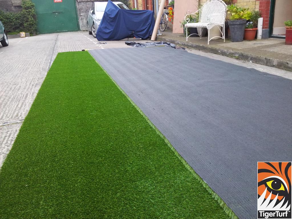 tigerturf lawn turf 827.jpg