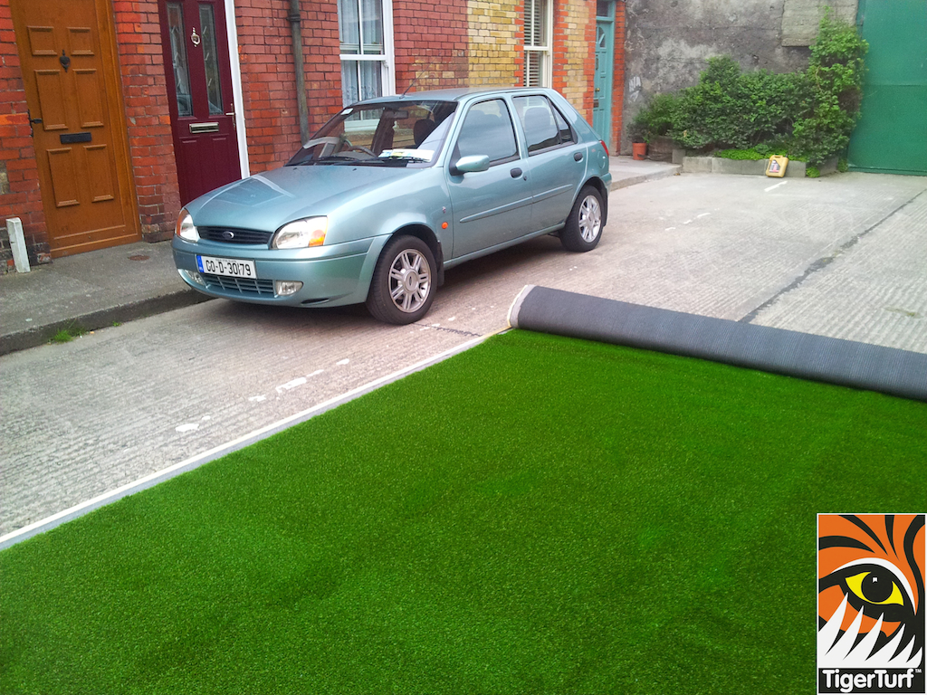 car and grass outside house