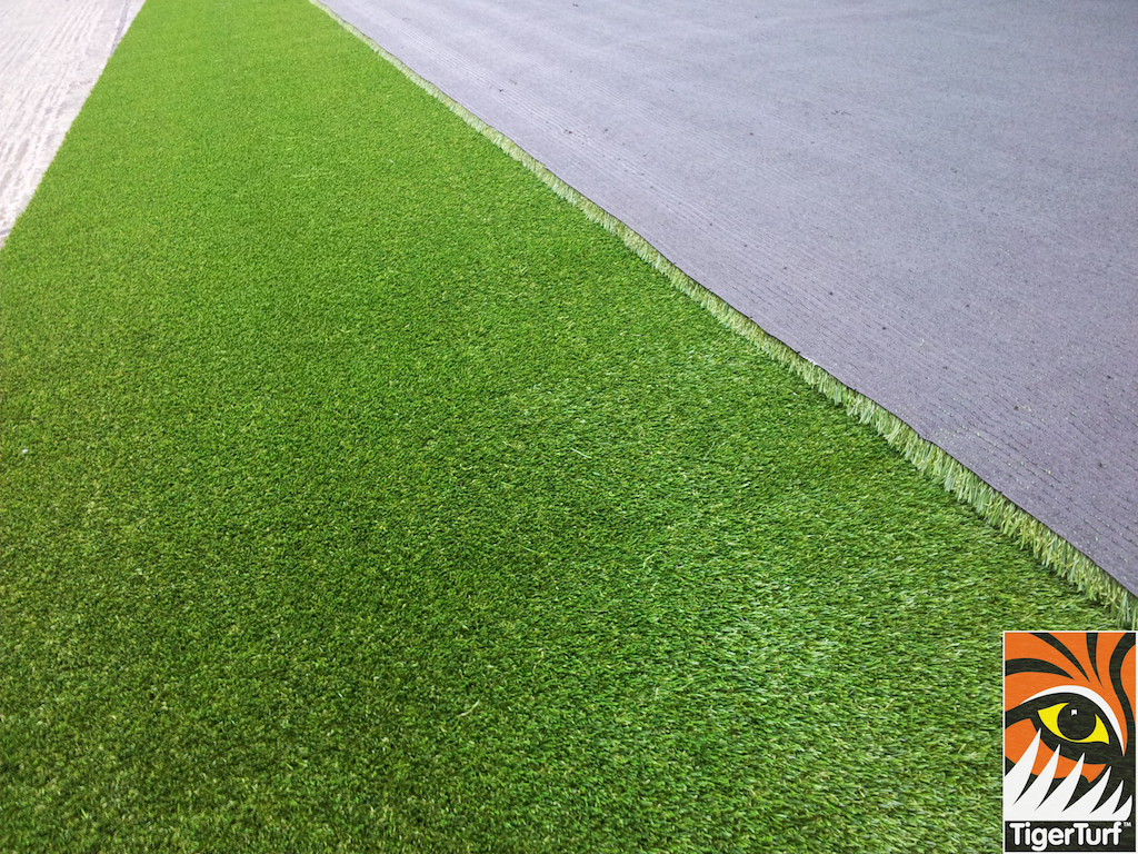 backing of grass turf