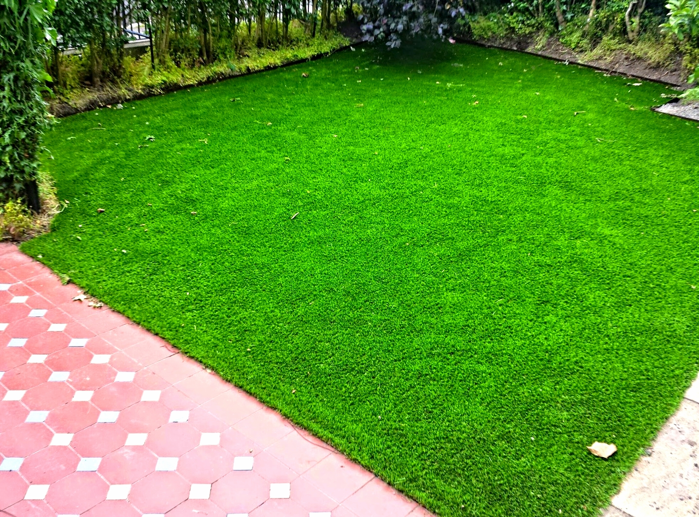 Front Lawn installation