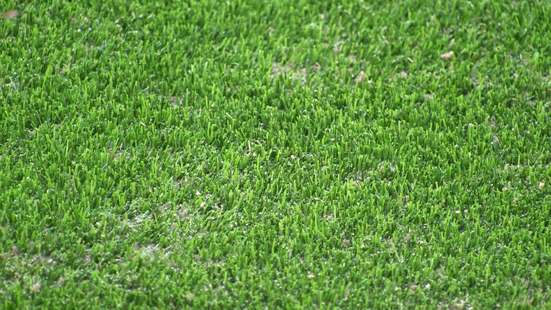 Sandyford Synthetic grass Installation