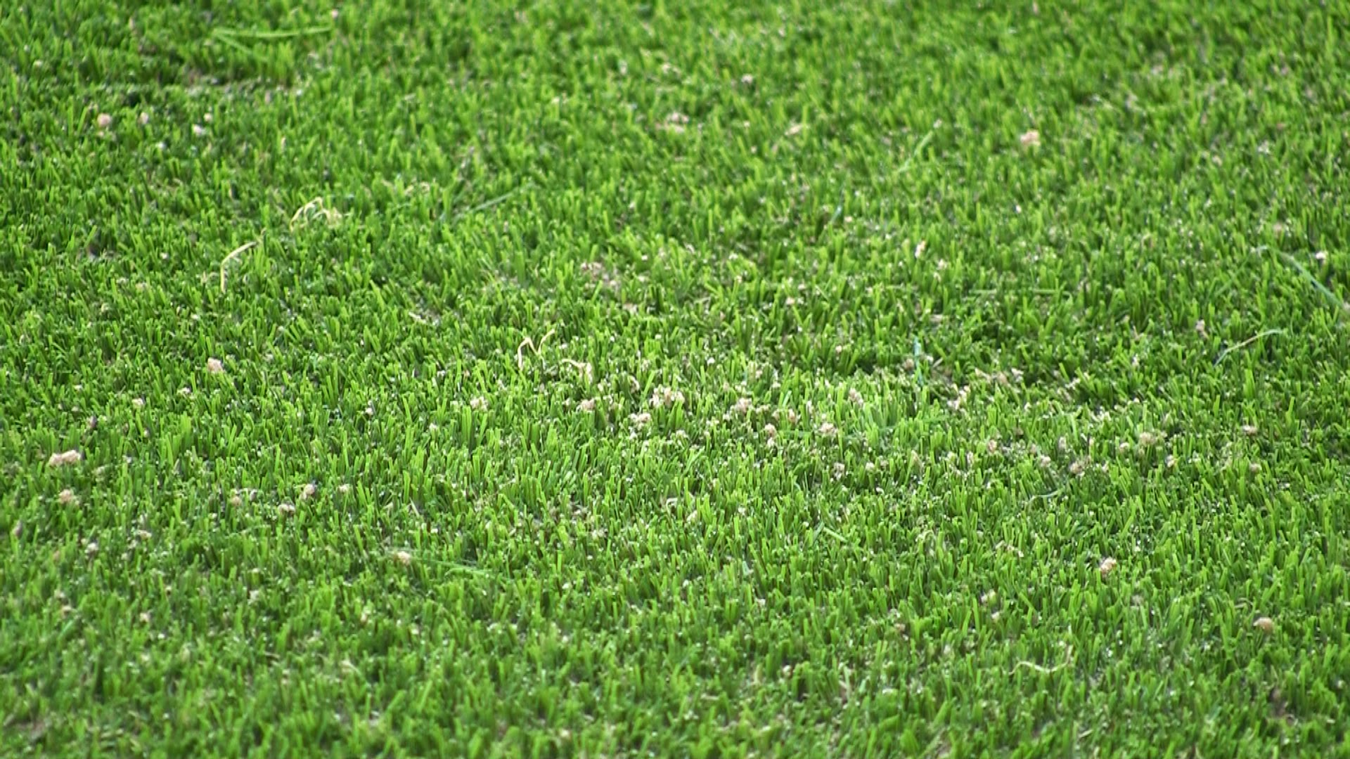 Synthetic Lawn turf installation