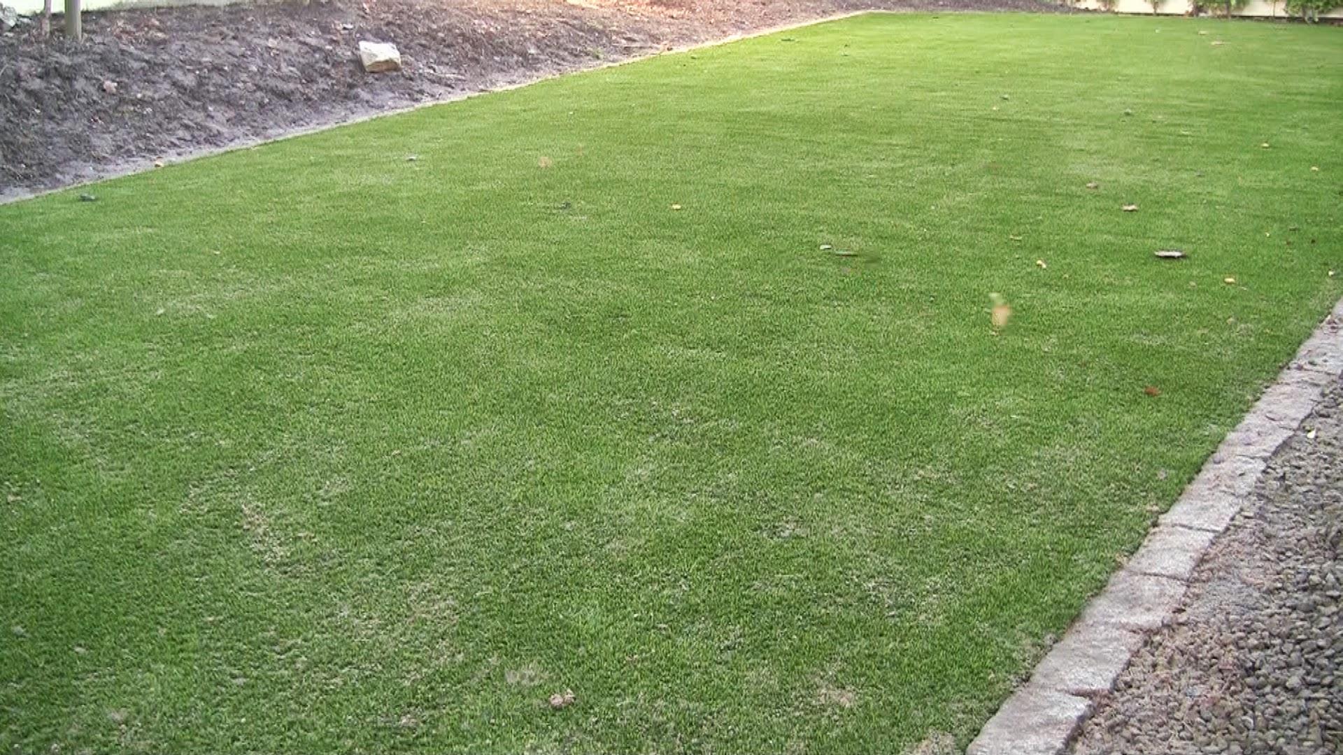 Synthetic Garden Lawn turf Grass