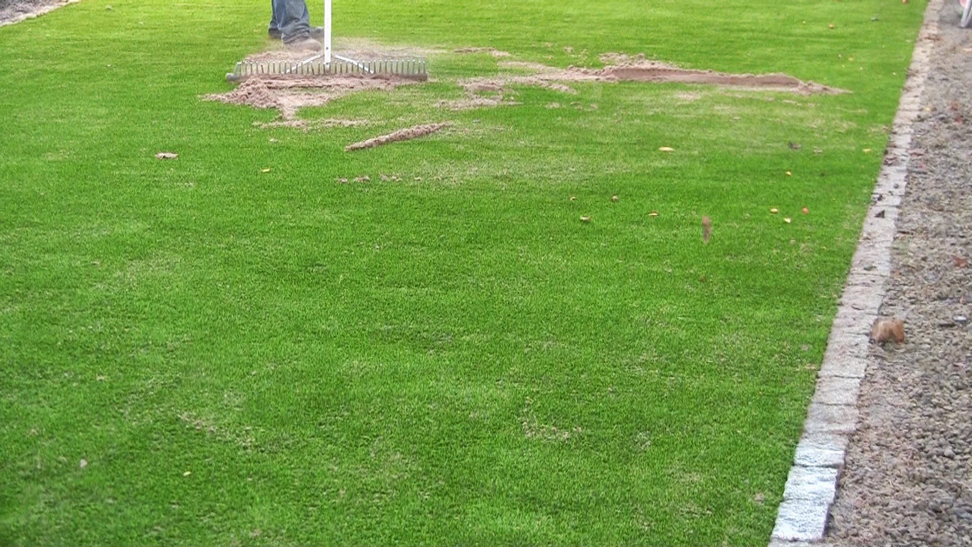 silica sand brush in for grass lawn