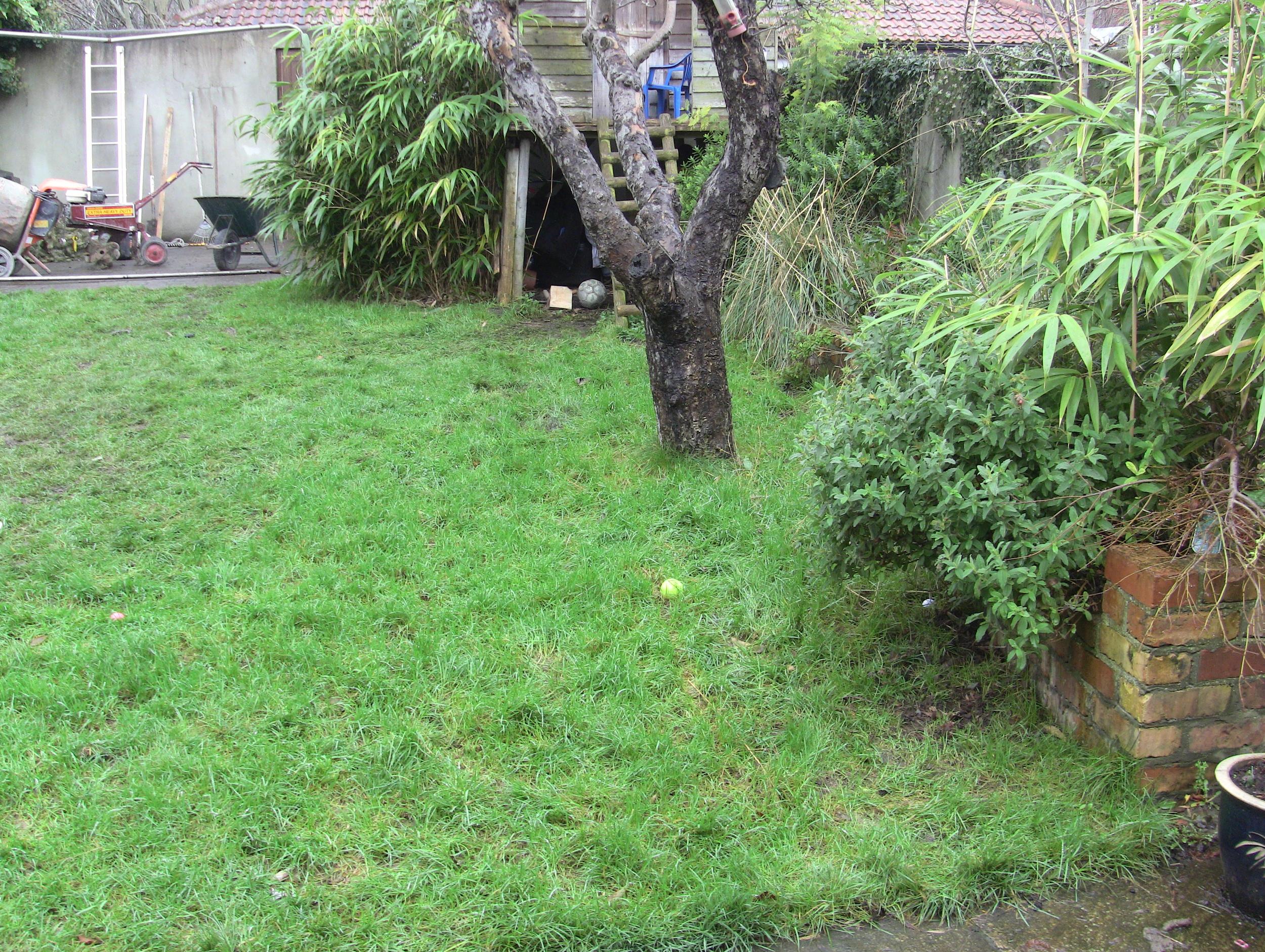 Garden before Landscaping