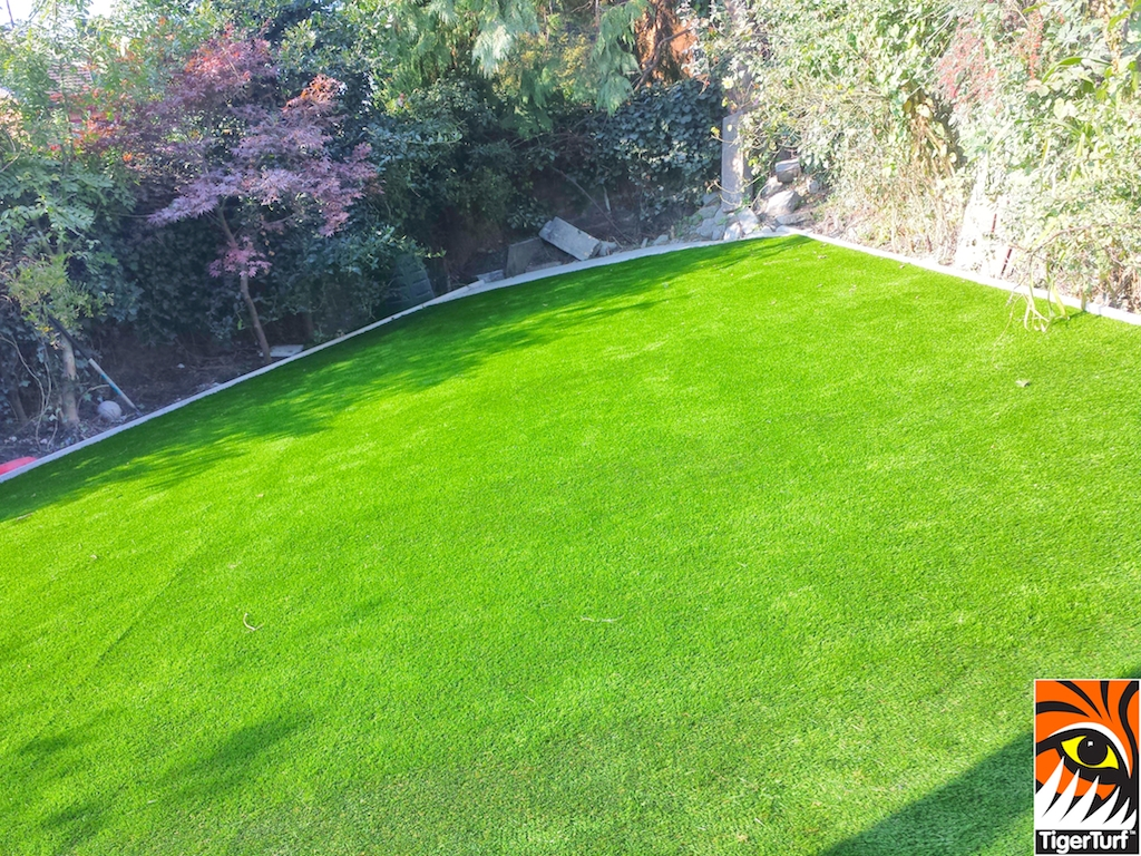 New synthetic lawn