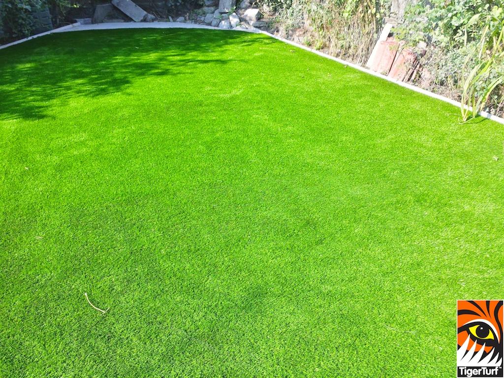TigerTurf lawn in back Garden