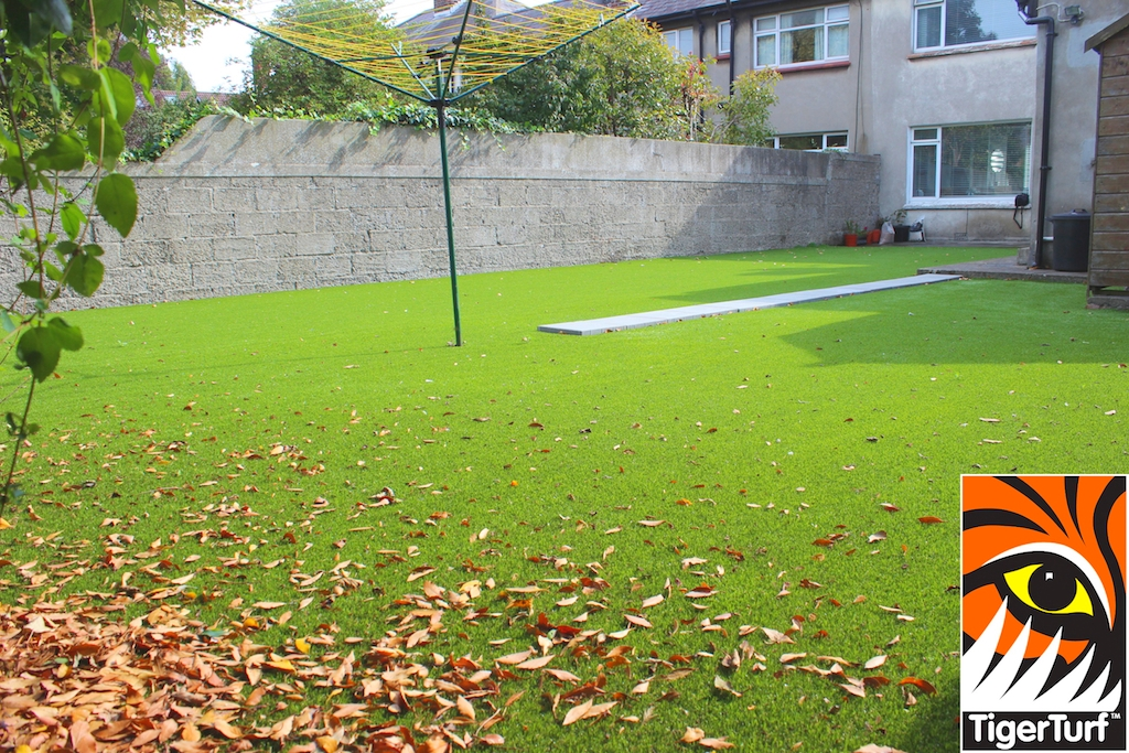 TigerTurf Finesse and leaves