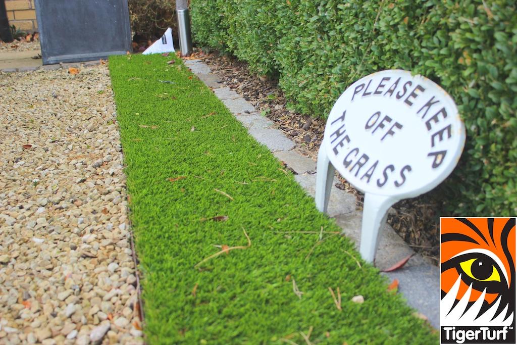 synthetic grass in family garden 28 (1).jpg