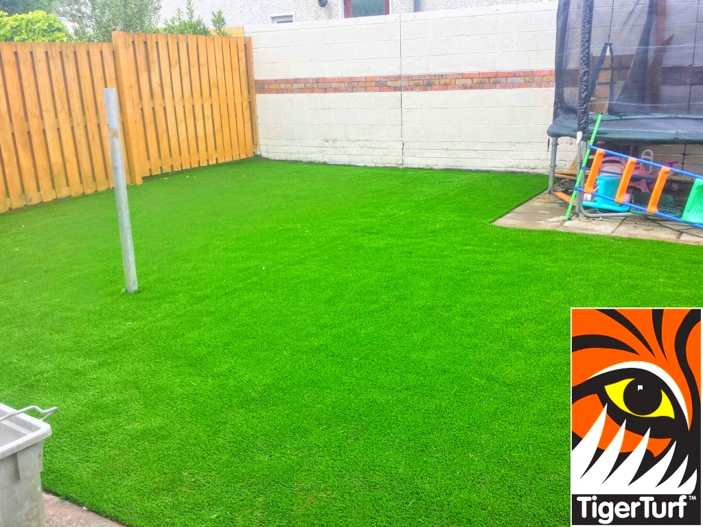 Synthetic grass in front lawn 5.jpg